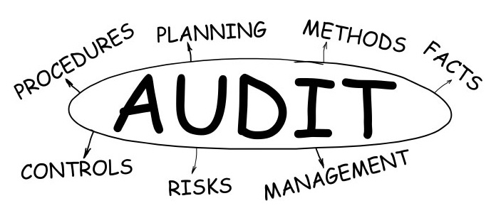 sistem audit vertikal horizontal