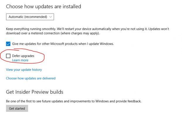Update Windows 10 dengan Defer Upgrade